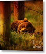 Fiercely Tired Metal Print