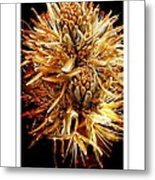 Fiery Floral Metal Print