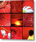 Fiery Red Metal Print