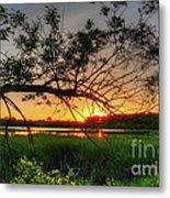 Fiery Swamp Sunset Metal Print by Deborah Smolinske