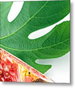 Fig And Leaf Metal Print