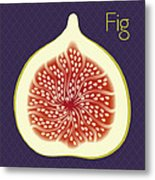 Fig Metal Print by Christy Beckwith