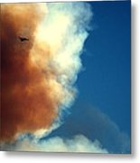 Fighting The Clover Fire Metal Print