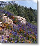 Figueroa Mountain Splendor Metal Print