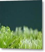Fiji Green 5 Metal Print