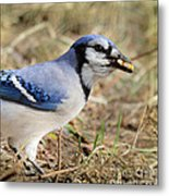 Filling The Cache Metal Print