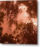Film Homage Joseph Cornell Rose Hobart 1936 Summer Monsoon Storm In My Front Yard Casa Grande Az '05 Metal Print