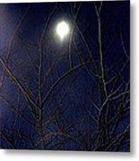 Film Noir Joseph H Lewis So Dark The Night 1946 Moon Trees Casa Grande Arizona 2000 Metal Print