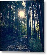 Find Yourself Go Run No. 6 - Forest With Sun Flare Metal Print