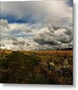 Finding Peace Metal Print by Christian Rooney