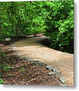 Finding The Way - Yates Mill Metal Print