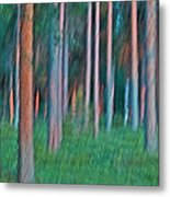 Finland Forest Metal Print
