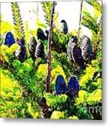 Fir Tree Buds Abstract Metal Print