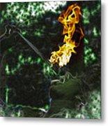 Fire Eater Metal Print
