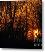 Fire In The Woods Sunset Metal Print