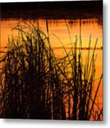 Fire On The Marsh Metal Print