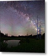 Fireflies Under The Stars Metal Print