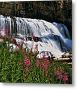 Fireweed Blooms Along The Banks Of Granite Creek Wyoming Metal Print