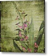 Fireweed - Featured In 'comfortable Art' Group Metal Print