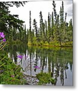 Fireweed On The Clearwater Metal Print