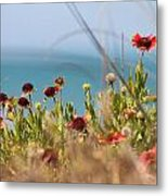 Firewheels By The Sea Metal Print