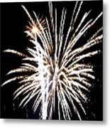 Fireworks 2 Metal Print by Mark Malitz
