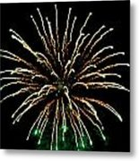 Fireworks 5 Metal Print by Mark Malitz