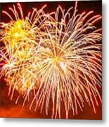 Fireworks Flower Metal Print by Robert Hebert