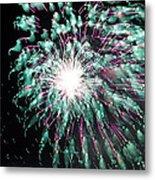 Fireworks Splendor Metal Print