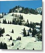 Firs Decoration Winterscape Metal Print