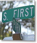 First And Park Metal Print