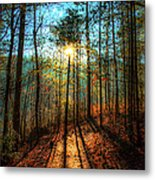 First Day In Heaven Metal Print