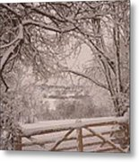 First Fall Of Snow Metal Print