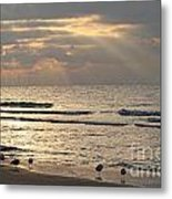 First Rays Of Dawn Metal Print