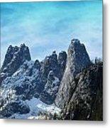 First Season's Snowfall Metal Print by Christine Burdine