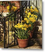 First Signs Of Spring Metal Print