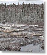 First Snow-algonquin Provincial Park Metal Print