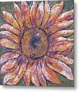 First Sunflower  Metal Print