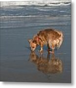 First Time At The Ocean Metal Print