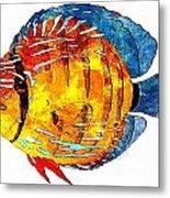 Fish 502-11-13 Marucii Metal Print