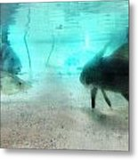 Fish By Sharon Cummings Metal Print by William Patrick