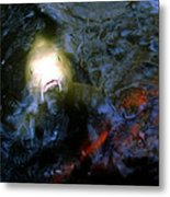 Fish Encounter Metal Print
