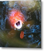 Fish Mouth Metal Print