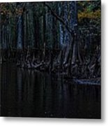 Fisheating Creek 28 Metal Print by Carol Kay