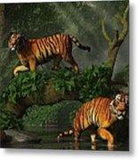 Fishing Tigers Metal Print