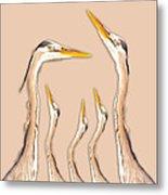 Five Herons Metal Print