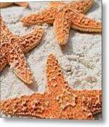 Five Starfish Metal Print