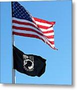Flags Metal Print