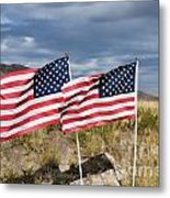 Flags On Antelope Island Metal Print