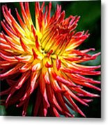 Flame Tips Metal Print
